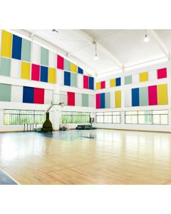 Sports hall acoustic panels