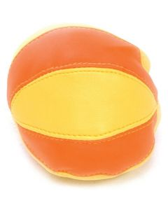 Beanbag Balls