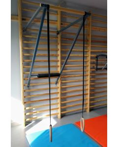 Wall bar mounted ring trainer