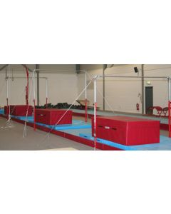 Club model high bar / low bar