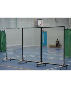 Portable dance / posture mirrors