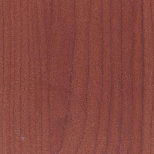 Rebound screens - sakura cherry